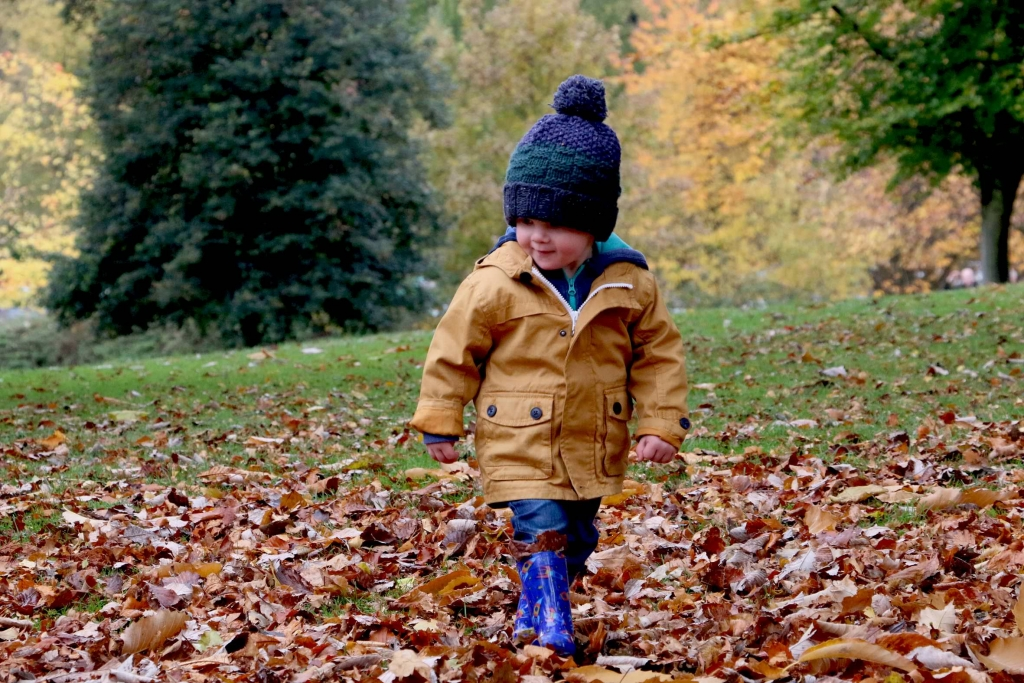 boy-walking-in-leaves