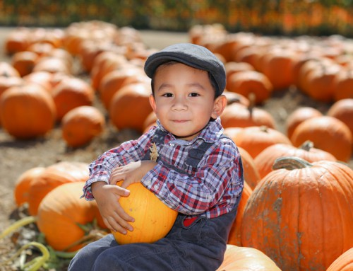 2019 Lane County Pumpkin Patch Guide